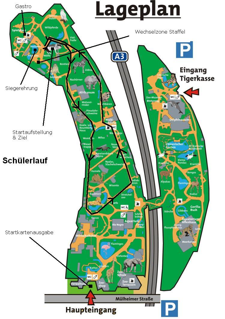 Zoolauf Duisburg Strecke Schüler