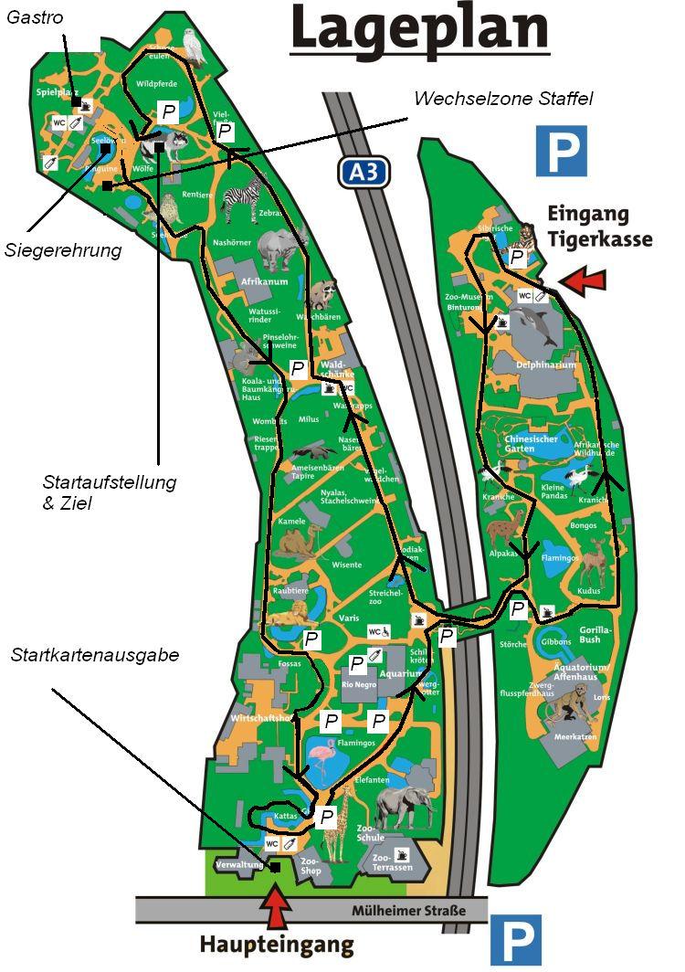 Zoolauf Duisburg Strecke Staffeln